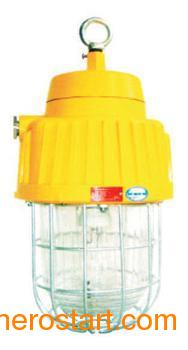 供应DGS70-127B(E)矿用隔爆型泛光灯