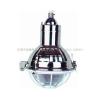供应BAD51-E增安型防爆灯
