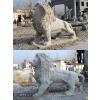 供应石雕石狮子,汉白玉献钱狮,石雕麒麟,石雕喷泉鱼,蹲狮走狮爬狮