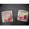 供应蓝莓盒,草莓盒、电子托盘等