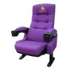 供应湖北影院椅,河北影院椅,礼堂椅,电影院阶梯灯,报告厅椅
