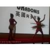 供应广州礼仪庆典,广州文艺演出,广州活动策划,广州模特