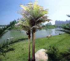 供应仿真椰子树