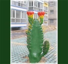 供应仿真仙人掌大花