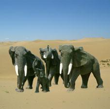 供应仿真大象