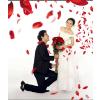 供应郑州婚纱摄影教你如何利用不同的天气拍婚纱照