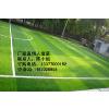 南宁诺莱供应丙稀酸PVC塑胶跑道场地铺设丨球场场地铺设丨塑胶跑道丨橡胶地垫