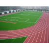 供应专业承接塑胶跑道施工,大、中、小学、校园内塑胶跑道工程