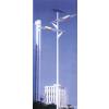 供应新疆太阳能路灯厂家 新疆太阳能路灯厂家