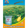 供应桂林最好的腻子粉厂家、防水涂料厂家