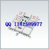 供应防爆动力照明箱定做BM(D)X51系列防爆照明(动力)配电箱