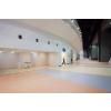 供应天津室内羽毛球运动地板为什么选择英利奥?天津市羽毛球运动地板价格