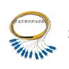 供应12芯束状尾纤(SC型)