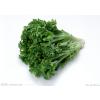 新鲜健康蔬菜供应