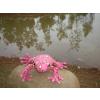 供应海乐园 仿真海洋毛绒玩具  青蛙