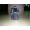 供应电瓶音箱塑料箱体 专业音箱塑料箱体