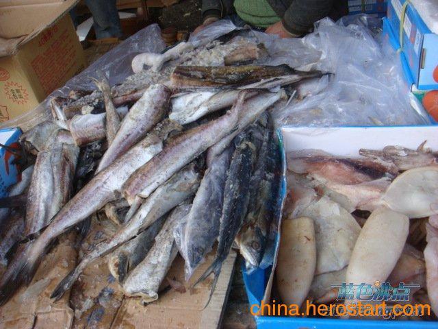 供应冻海鲜专业代理清关鱿鱼 海蟹 龙虾边贸清关代理