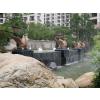 供应城市景观雕塑,动物雕塑,园林景观设施,城市小区,公园景观