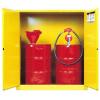 供应厂家直销优质虎门45加仑安全柜