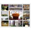 供应花盆,花池,花园装饰品,园林景观设施,城市小区,