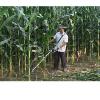 供应河北玉米收割机哪有卖 玉米杆收割机多少钱