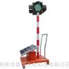 供应太阳能爆闪灯|太阳能移动信号灯|哪里有移动信号灯