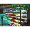 供应安庆市哪里有卖水果展示柜