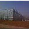 供应供应连栋温室大棚,连栋温室