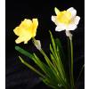 供应水仙花迷你盆栽 仿真花套装 小盆景 办公桌假花绿植物 素雅摆件