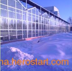 供应供应玻璃温室大棚,玻璃温室大棚厂家