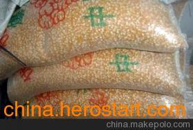 石家庄爆裂玉米供应商 石家庄供应爆裂玉米的厂家