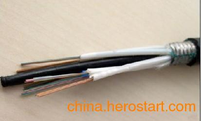 供应Fibercom层绞4芯室外单模光缆重庆代理