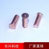 供应焊接螺钉(厂家报价,)