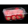 供应江西赣州龙南鸡蛋水果环保吸塑塑料包装制品盒 化妆品PVC胶盒 PS植绒吸塑托盘