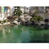 供应公司景观水处理方案-景观水处理
