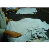 供应纳米比亚蓝湿羊皮进口报关公司