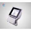 供应 LED投光灯70W投光灯户外投光灯TTGDCZ09