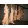 供应新西兰130厂羊肉三分体,冷冻羊板筋批发价