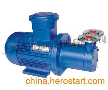 供应CWB型磁力驱动旋涡泵