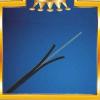 供应FTTH 电信级自承式蝶形1/2单芯双芯芯室外皮线光缆两/三根钢丝