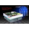 供应蔬菜保鲜柜 超市蔬菜保鲜柜 蔬菜保鲜柜价格