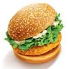 供应成都汉堡加盟—美嘉乐一条龙输出服务