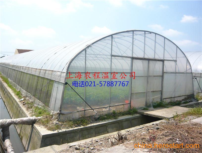 供应单体8米宽度蔬菜大棚安装
