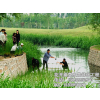 供应人工浮岛污水处理、人工浮岛绿化工程