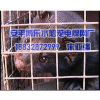 供应安平最好的水貂笼——安平博乐