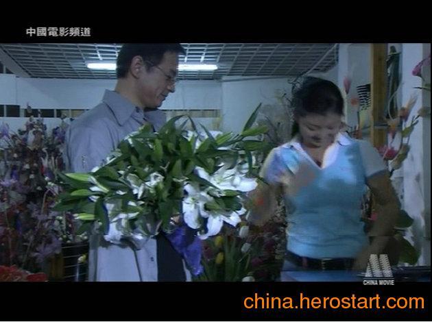 供应福永安装香港电视卫星天线