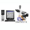 供应山东济南4XC-W金相显微镜
