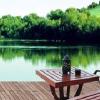 绿化装饰方案|天津市优质的绿化装饰公司