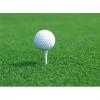 高尔夫球场人造草坪/人造草坪价格/杭州人造草坪供应