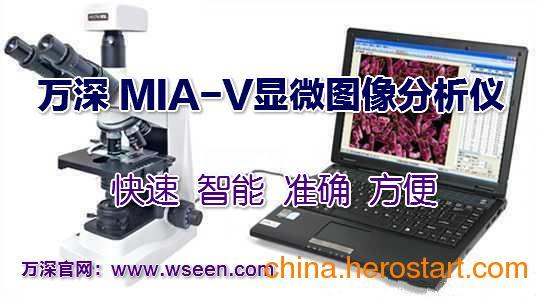供应万深MIA-V显微细胞分析仪/细胞计数仪